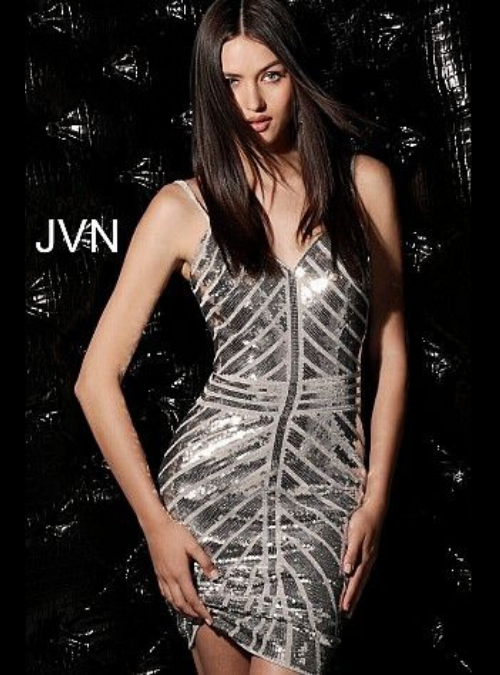 JVN64156